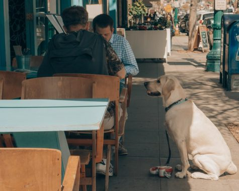 Five Restaurants Around Portland With Outdoor Dining